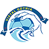 LOGO Vistal Gdynia